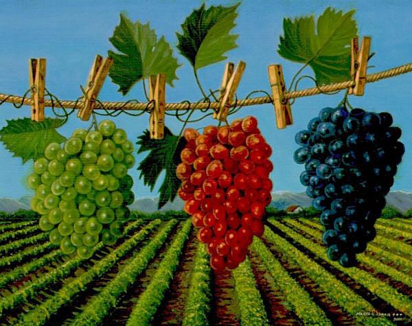 ¿Susrealismo? - Página 8 Grapes_clothline_lg