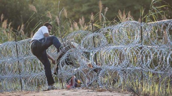 desciende-personas-entran-ilegal-hungria_ediima20150828_0132_18